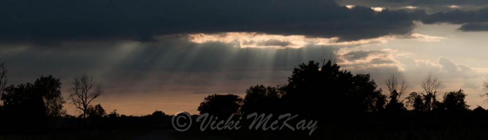 Rays of Hope. Sun streaks coming through a hole in the clouds. Copyright Vicki McKay, e-Scapes Photography.