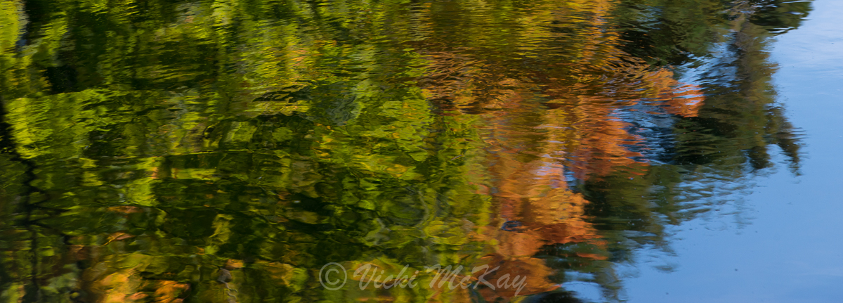 Autumn's Reflection - autumn colours reflected on water